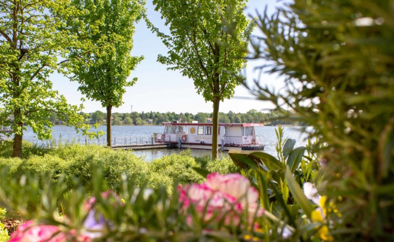 Blick durch die grüne Natur auf die MS Fontane auf dem Ruppiner See