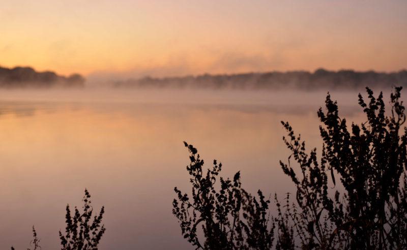 Von Nebel bedeckter See in der Region Neuruppin