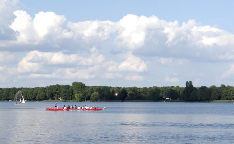 Rudermannschaft im Boot auf dem Ruppiner See nahe des Tagungshotels in Brandenburg