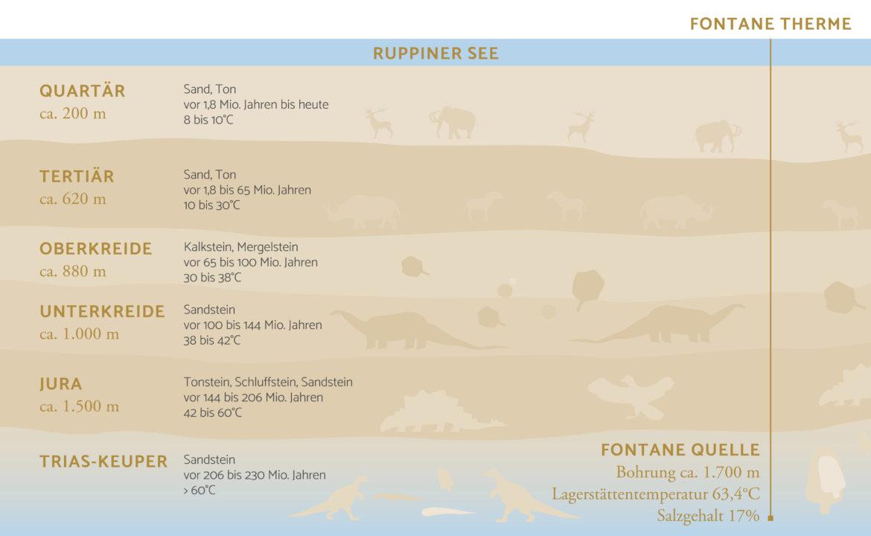 Querschnitt mit Informationen zur Bodenbeschaffenheit und Fontane Quelle am Ruppiner See