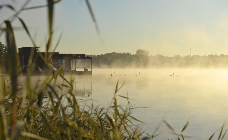 Nebel steigt vom See in Neuruppin auf