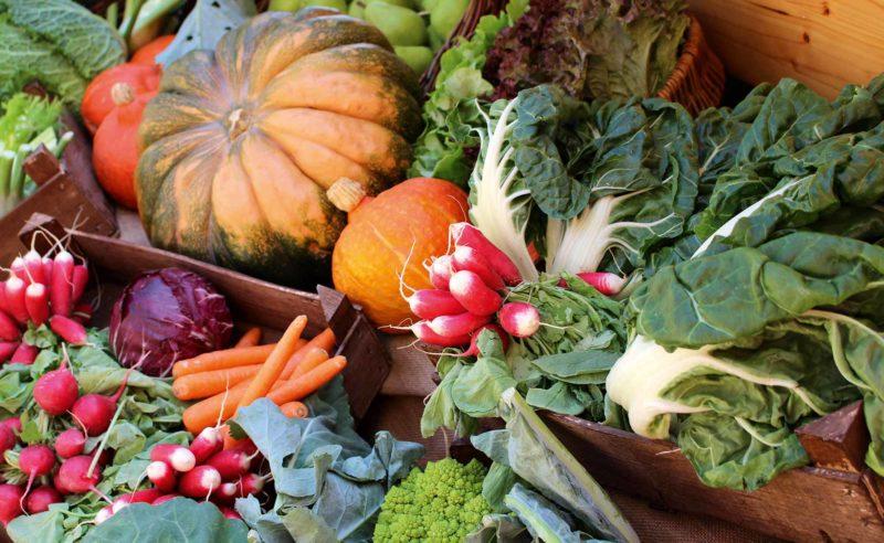 Frisch geerntetes regionales Gemüse wie Kürbis, Radieschen, Karotten, Kohl