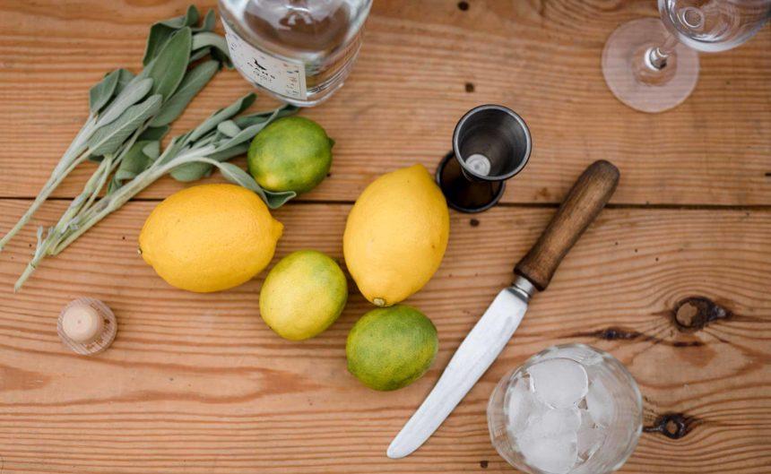 Frische Limetten, Zitronen und Gin auf einem Tisch vom Partner Gans