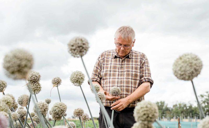 Partner Rixmann überprüft den Bestand auf seinem Feld in der Region Neuruppin