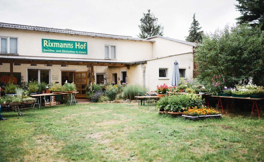Garten und Eingang des Partner Rixmann