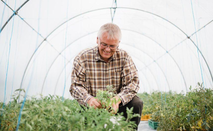 Bauer Rixmann pflegt die Pflanzen in seinem Gewächshaus