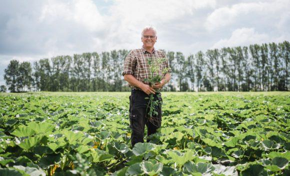 Ein Mann steht auf seinem grün gewachsenen Acker in der Region Neuruppin